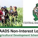 P-AADS Loan