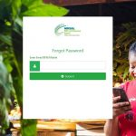 Nigerian Youth Investment Fund (NYIF) Status Login Dashboard